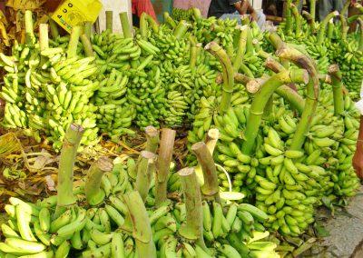 Mysore-Markt-Bananen