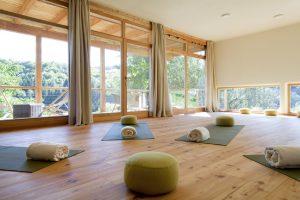 Yogaurlaub mit Horst Rinnerberger mit Asana, Pranayama, Kriyas, Meditation und Chanting