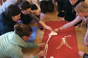 yogalehrer-ausbildung-anato