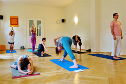 Workshop Yoga Mysore Style in 2 Tagen