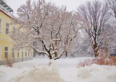 Studio-Garten-Winter