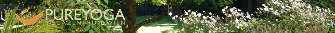 der aktuelle Yoga Stundenplan mit allen Yogaklassen in unserer Grünoase im Yogastudio Pureyoga in Wien