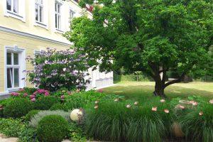 Sommer im Pureyoga. Yoga Genuss mitten in Wien.